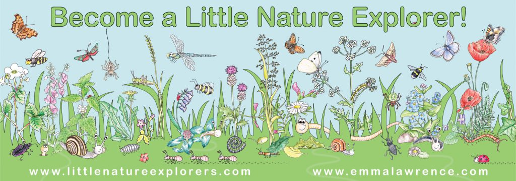 Little Nature Explorer banner