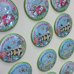 Magnets showing ladybird and bee design